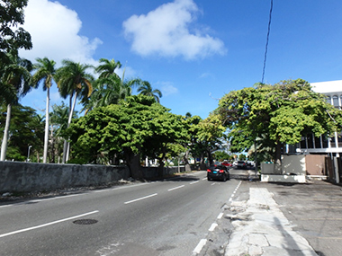 bahamas45