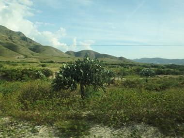 haiti50
