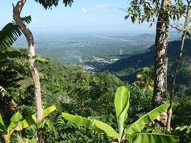 haiti81
