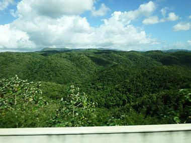 jamaica52