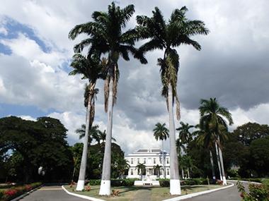 jamaica89