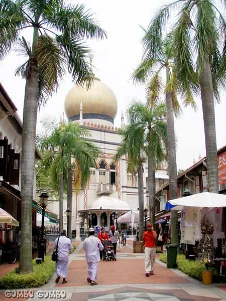 singapoleH